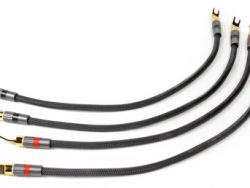 Oracle Speaker Jumpers Cables